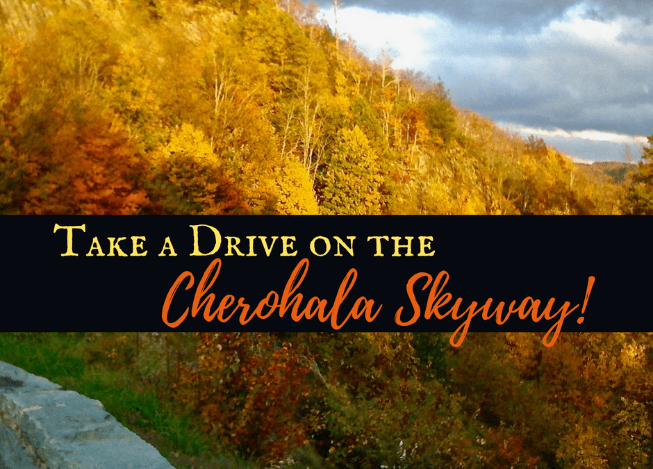 Take a Drive on the Cherohala Skyway!