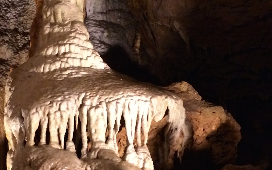 Explore Florida Caverns State Park