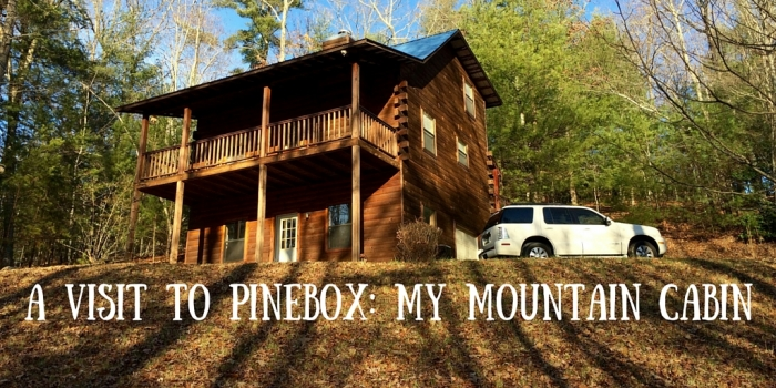 A Visit to Pinebox  My Mountain Cabin 2 - Hop a Scenic Mountain Train in Blue Ridge, Georgia