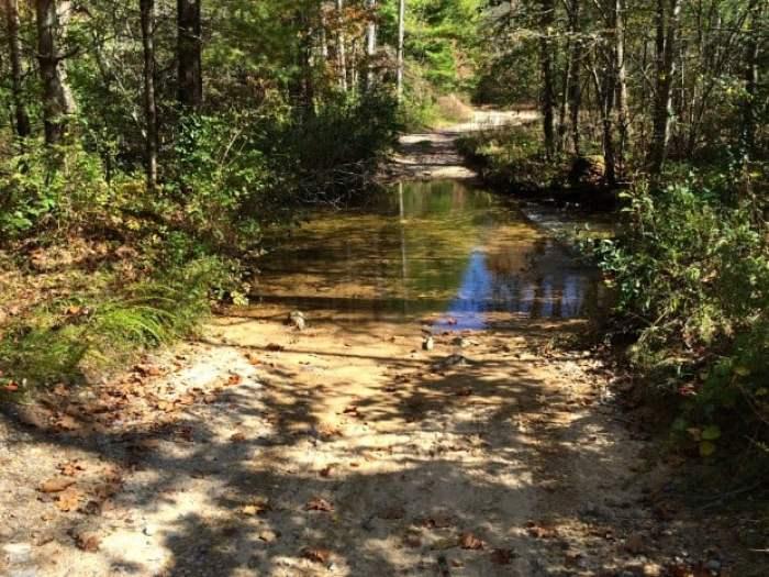 Sea Creek Ford Near Falls