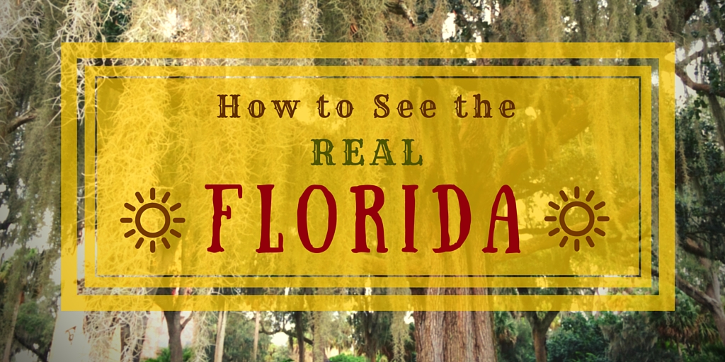 Florida 2 - How to See the Real Florida: 11 Essential Web Sites