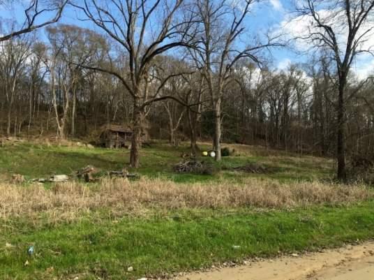 IMG 1478 - Mississippi Backroads Between Natchez & Vicksburg