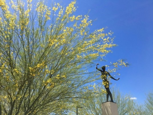 Palo Verde Tucson Arizona Statue