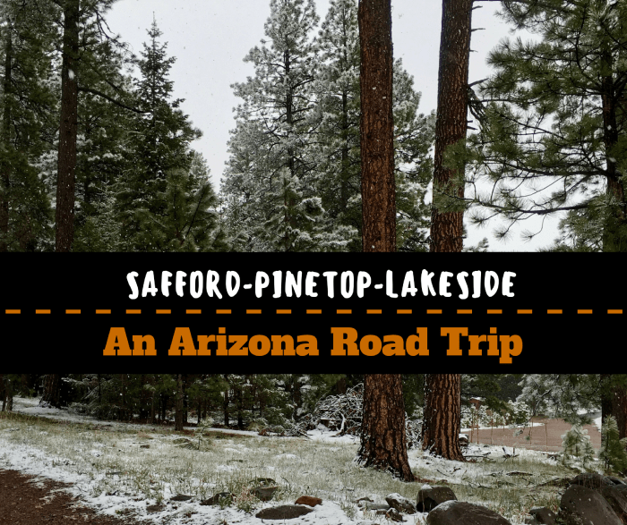 Safford to Pinetop-Lakeside: An Arizona Road Trip