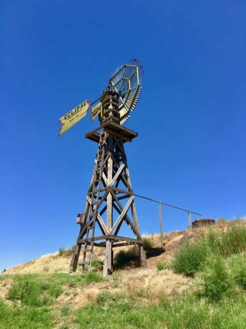 Texas Windmill