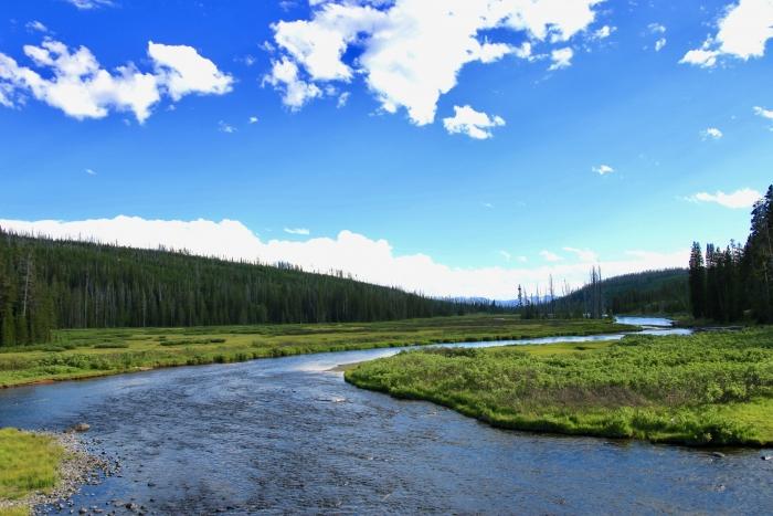 Rocky stream and landscape