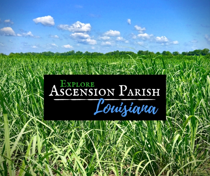 Explore Ascension Parish, Louisiana