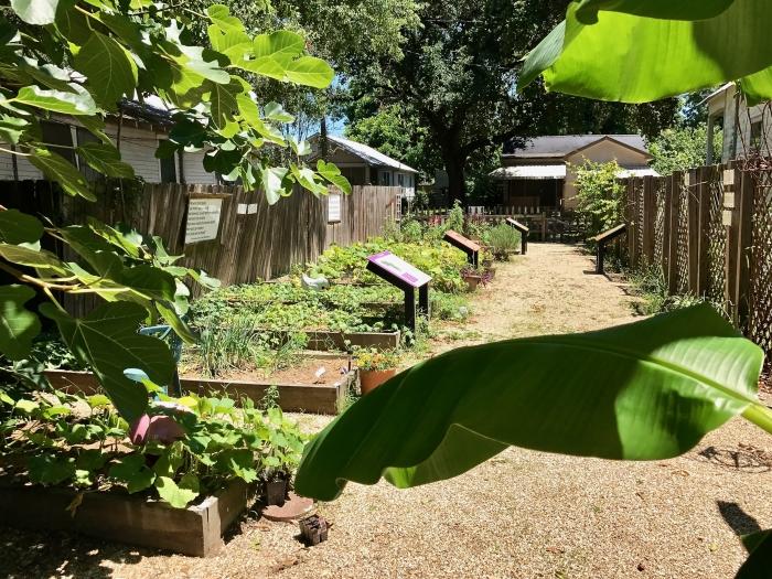 IMG 5108 - Explore Ascension Parish, Louisiana