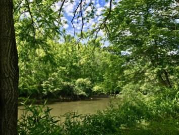 IMG 5692 - Franklin, North Carolina: A Smoky Mountain Adventure