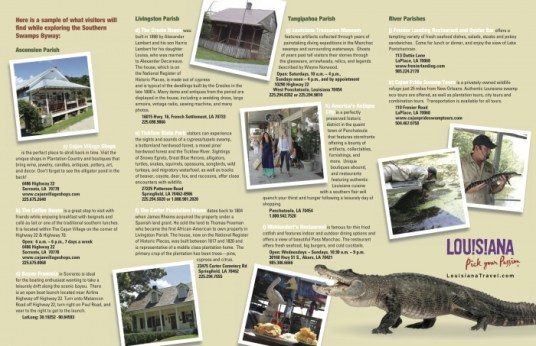 Southern Swamps 2 - Design Your Own Louisiana Road Trip