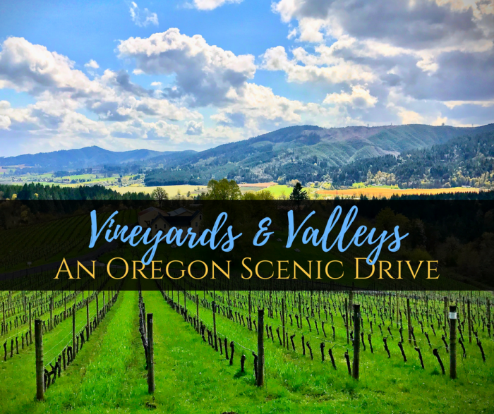 Vineyards & Valleys: An Oregon Scenic Drive