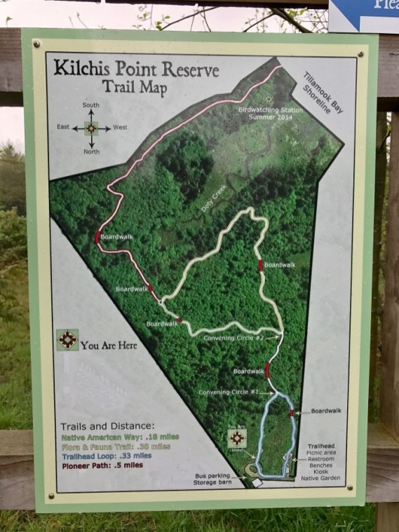 IMG 3582 - Tillamook: A Drive Along the North Oregon Pacific Coast