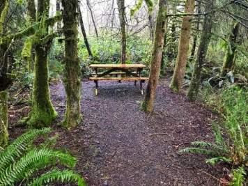 IMG 3590 - Tillamook: A Drive Along the North Oregon Pacific Coast