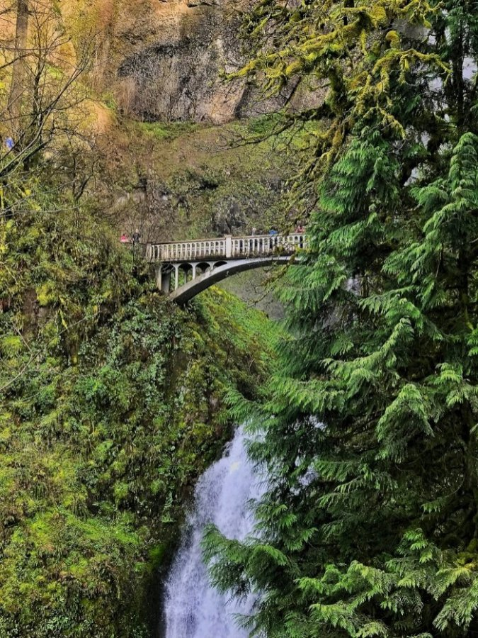 IMG 3937 - Roadside Waterfalls of Oregon's Columbia River Gorge