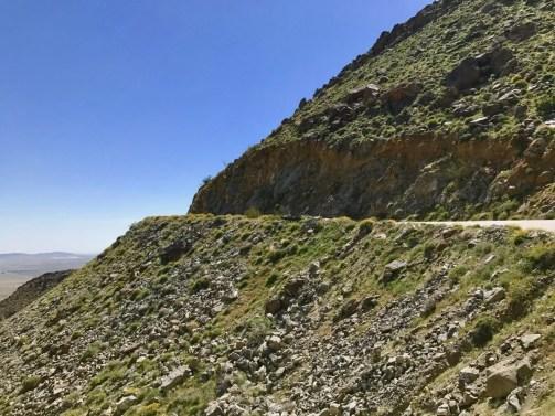 IMG 2197 - Wildflower Chasing at Anza-Borrego Desert State Park California