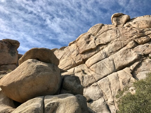 IMG 2392 - Best Hikes in Joshua Tree National Park on a One-Day Trip