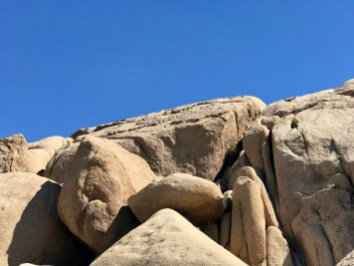 IMG 2557 - Best Hikes in Joshua Tree National Park on a One-Day Trip