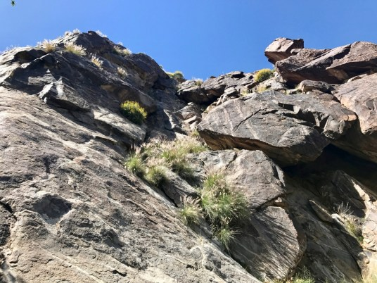 IMG 2649 - Take a Hike up Southern California's Tahquitz Canyon