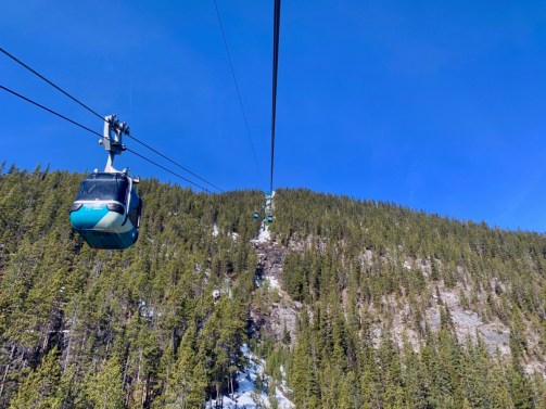 Banff Gondola Sulphur Mountain - The Best Sites & Activities for a Town of Banff Adventure