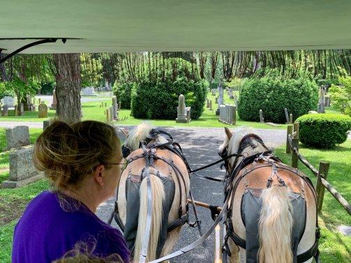 Lexington Carriage Ride