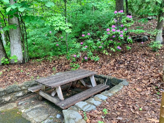 Natural Bridge picnic table - Scenic & Historic Things to Do in Lexington, Virginia