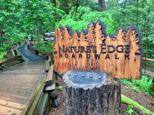 Nature's Edge Boardwalk at Capilano Suspension Bridge Park