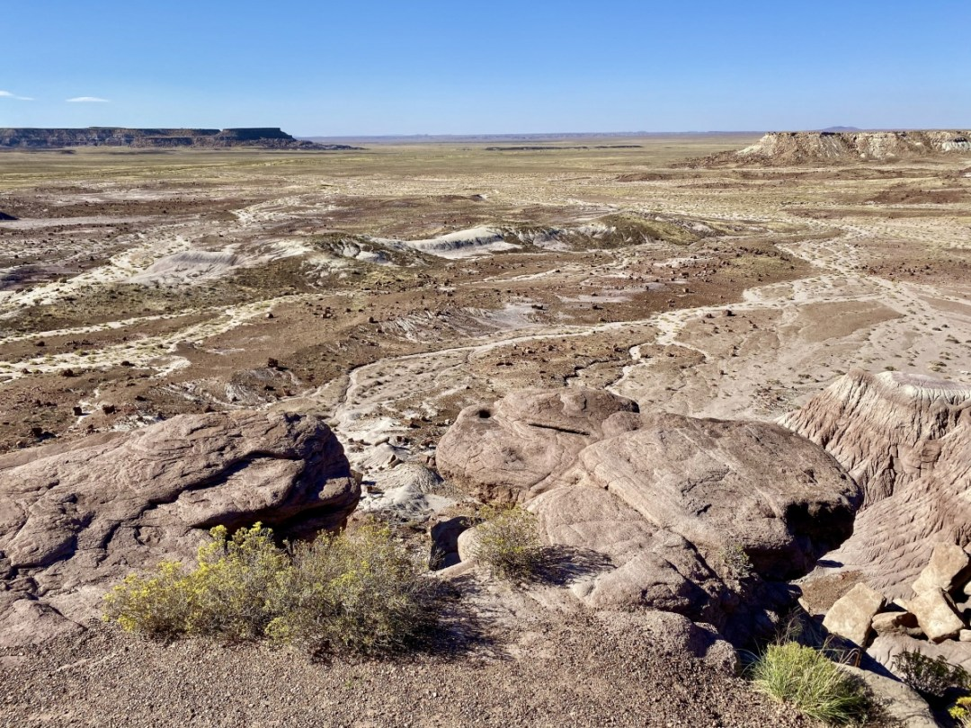 Jasper Forest Petrified Forest NP - Drive the Painted Desert & Petrified Forest National Park