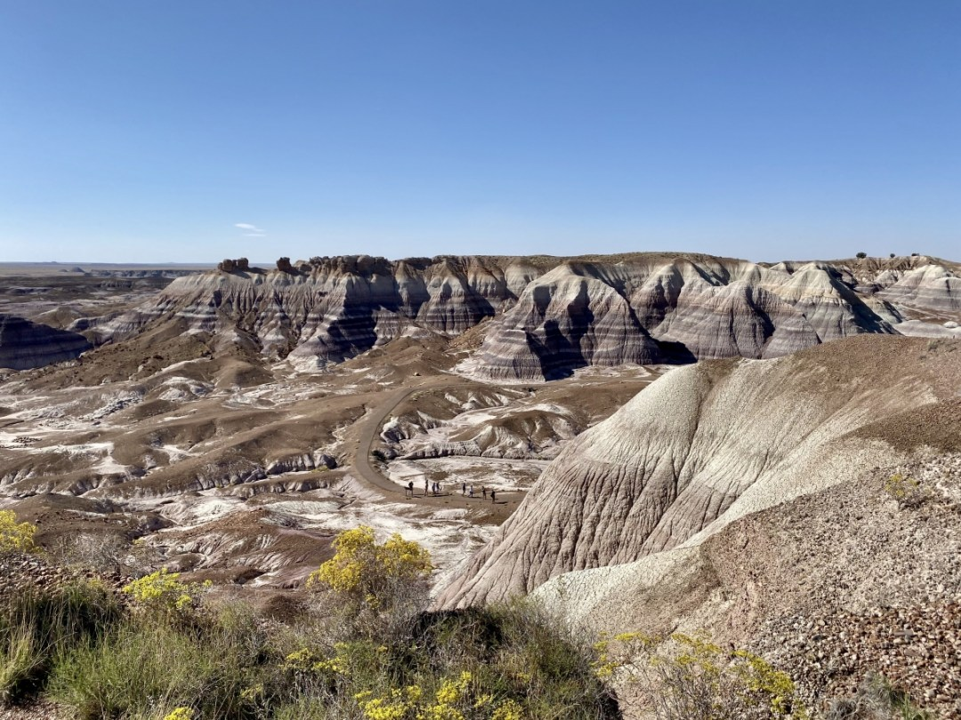 Petrified Forest NP Blue Mesa - Drive the Painted Desert & Petrified Forest National Park