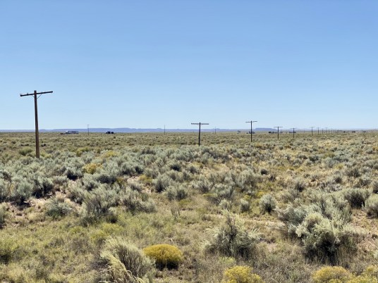Route 66 telephone poles - Drive the Painted Desert & Petrified Forest National Park