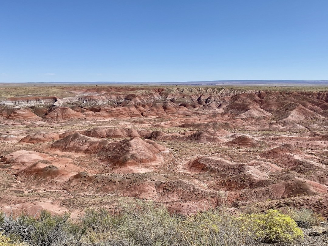 The Painted Desert - Drive the Painted Desert & Petrified Forest National Park