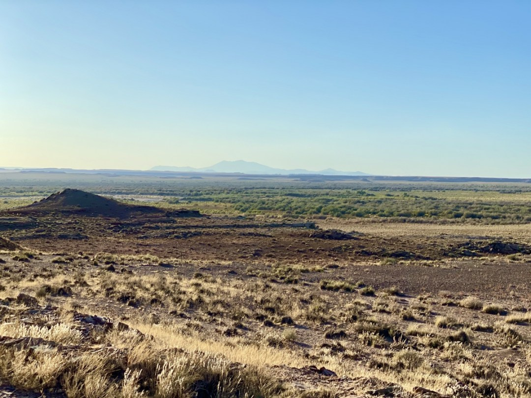 San Francisco Peaks from Homolovi SP - Tons of Fun Things to Do in Winslow Arizona