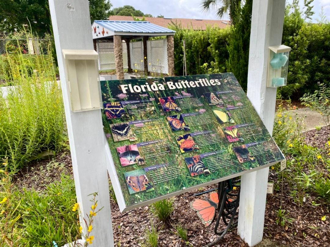 Florida Butterflies interpretive panel - Discover Lake County Florida Outdoor Adventures