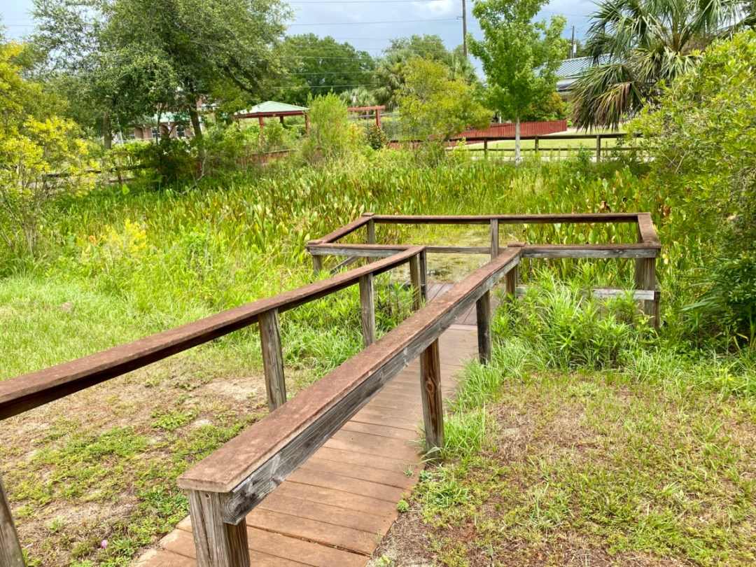 Wetlands Garden - Discover Lake County Florida Outdoor Adventures