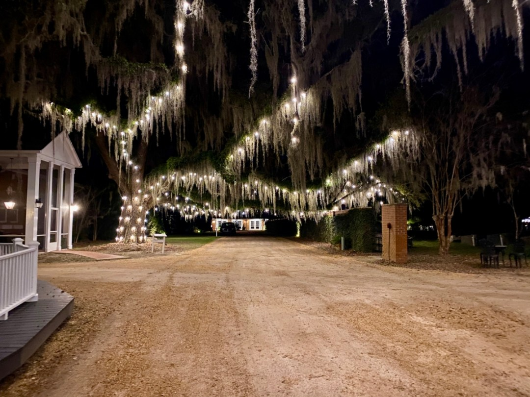 South Eden oak lane at night - Encounter Historic Quail Hunt Plantations in Thomasville GA