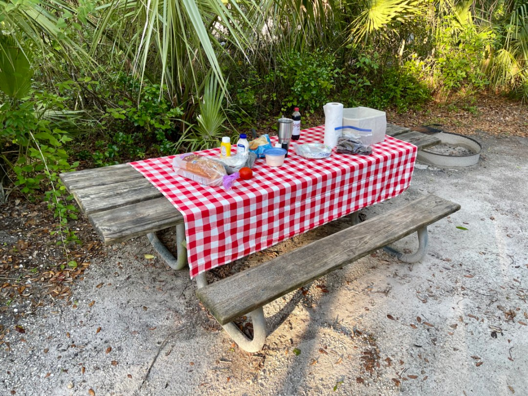 picnic table - Discover Florida's Blue Spring State Park & Campground