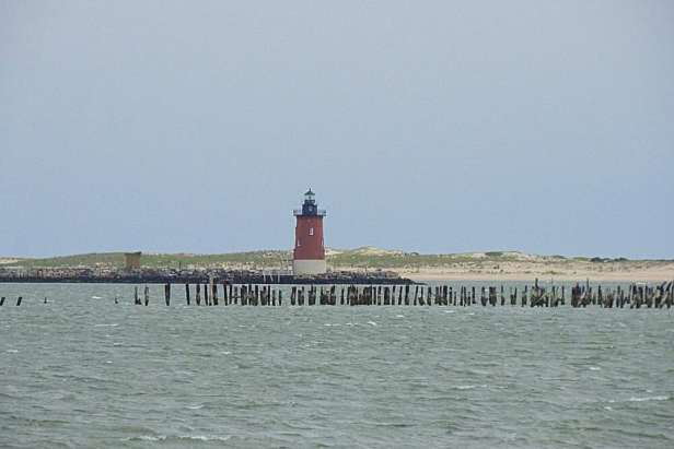 Cape Henlopen State Park needs to be on your list of road trip destinations.