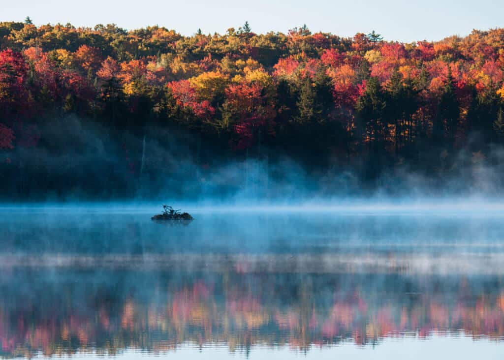 Fog rises off Adams Reservoir in Woodford State Park, Vermont