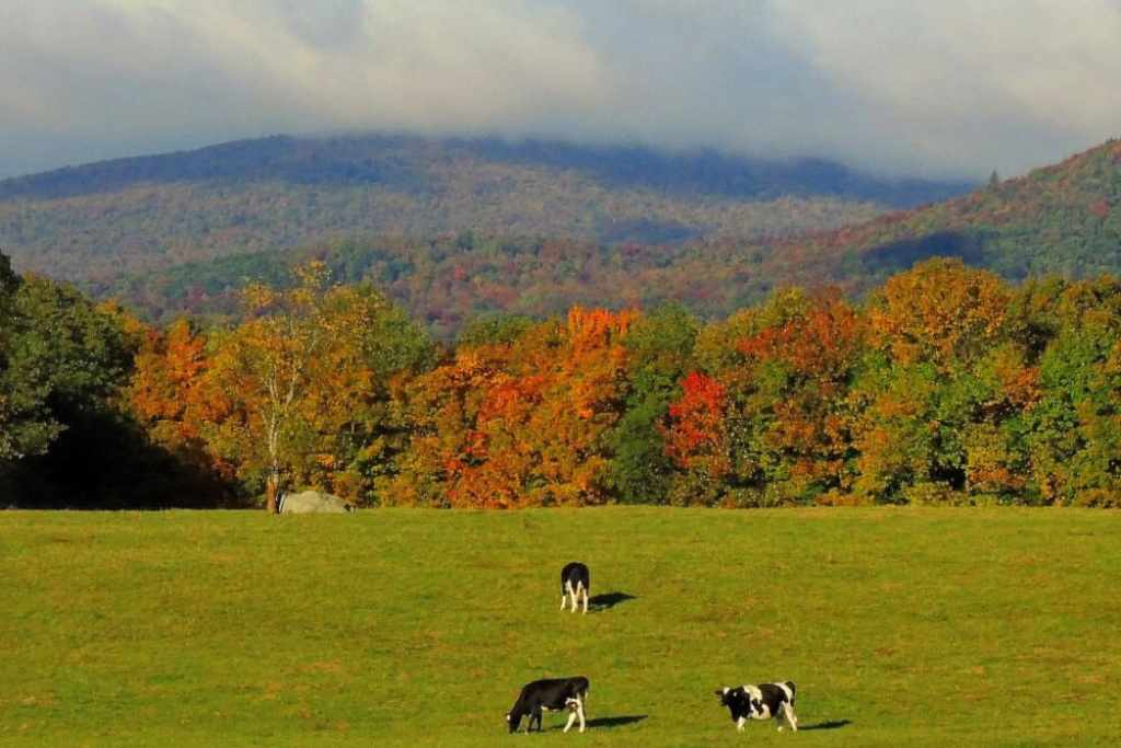 A view of the mountains in the fall from Boyd Hill Road in Wilmington, VT