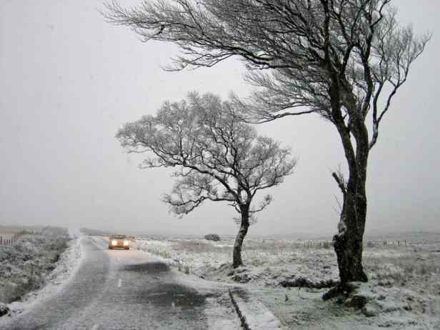 A car drives along a snowy, icy road past two bare trees.