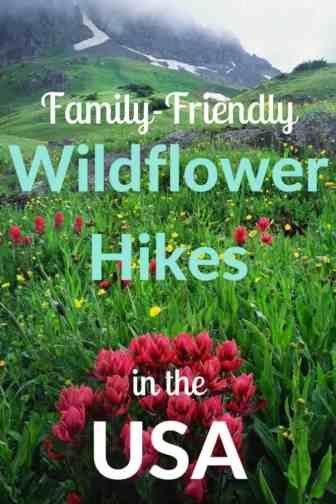 These are some of the prettiest wildflower hikes in the United States. Perfect for Families! #hiking #wildflowers #getoutside