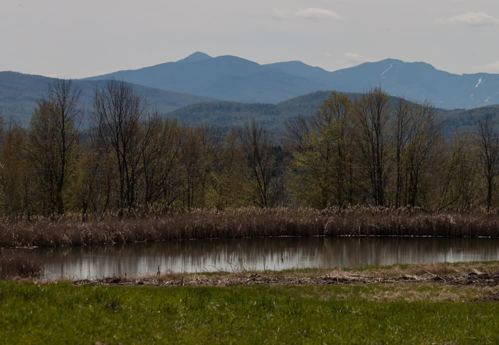 The green mountains of Vermont as seen from Stony Pond Farm in Vermont.