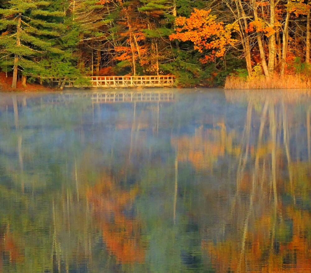 Autumn: Lake Shaftsbury State Park