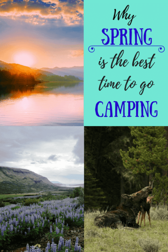 Avoiding the throngs of people that camp from Memorial Day to Labor Day is just one reason why spring camping is perfectly awesome. Here a few more to entice you to get out there.