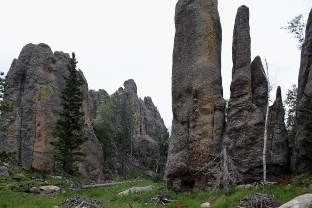 A path through very tall rocks in Custer State Park, SD