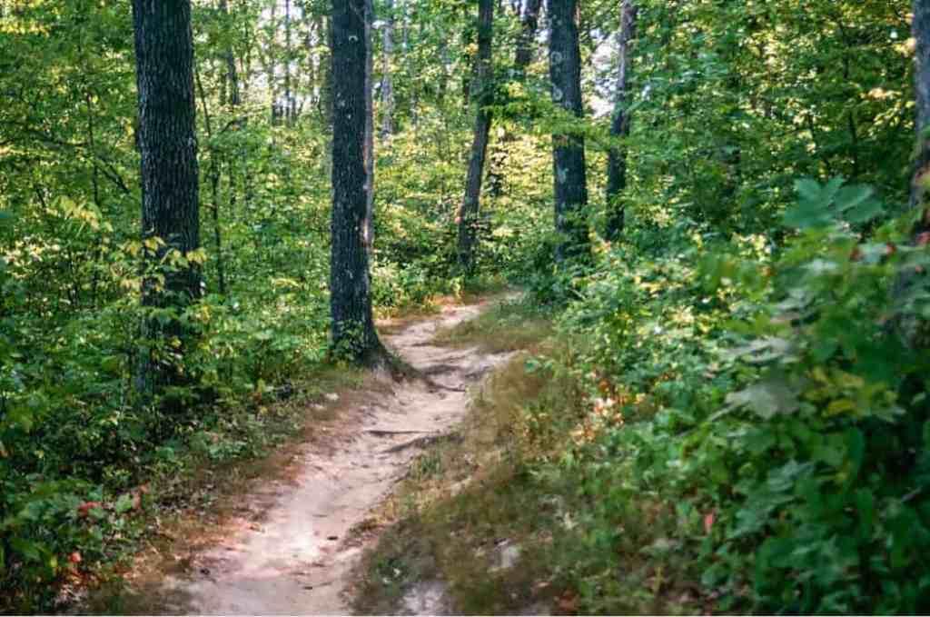 A hiking trail in Thousand Hills State Park, Kirksville, Missouri