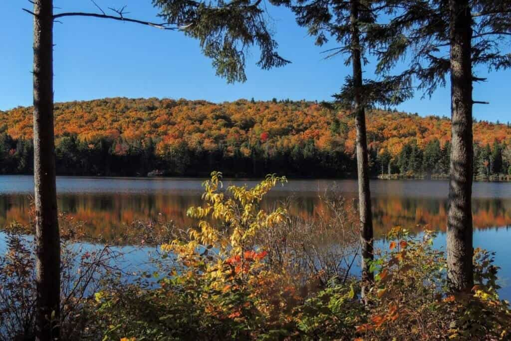 Grout Pond, VT surrounded by colorful fall foliage