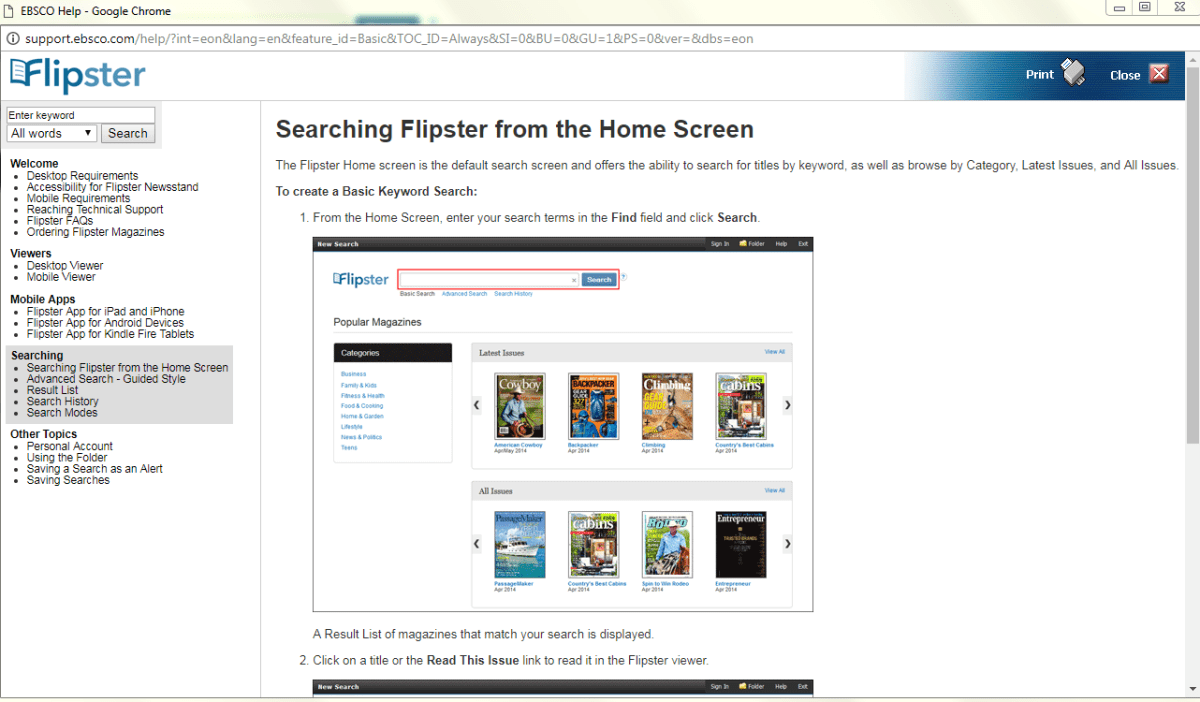 flipster screenshot2