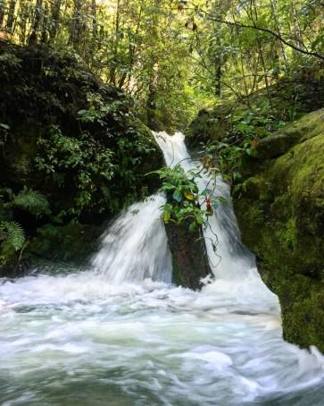 Elvy Falls