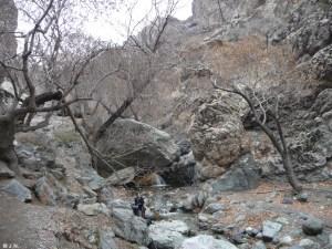 15_01_29-Iran_1-034