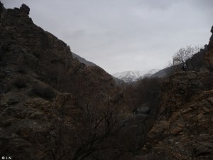 View into Alborz mountains